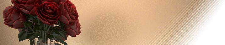 efecto  - декоративная краска с эффектом морской пены
